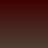 今朝採れたばかりのラディッシュの色